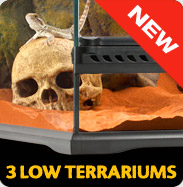 New: 3 Low Terrariums
