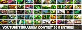 Exo Terra Terrarium Contest 2011 Entries