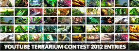 Exo Terra Terrarium Contest 2012 Entries