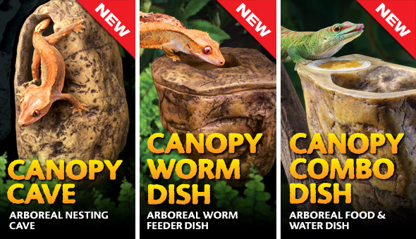 Canopy Cave - Canopy Worm Dish - Canopy Combo Dish