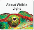 About visible light