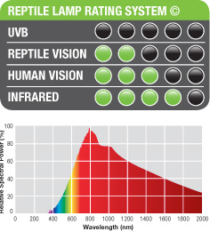 Reptile Lamp Rating System
